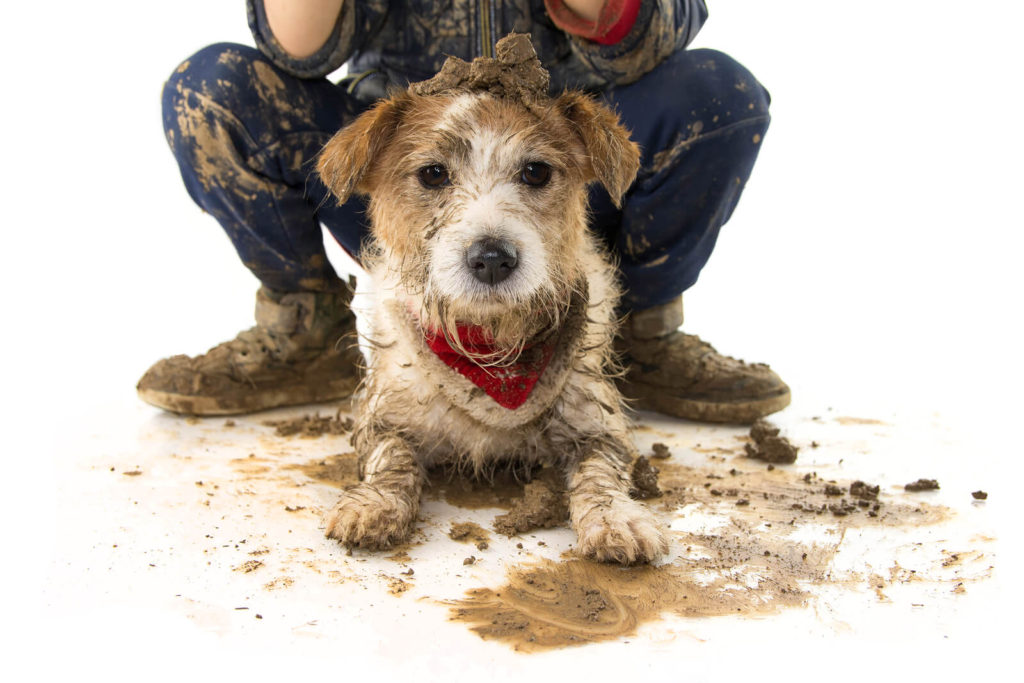 dog and owner covered in dog poop and mud
